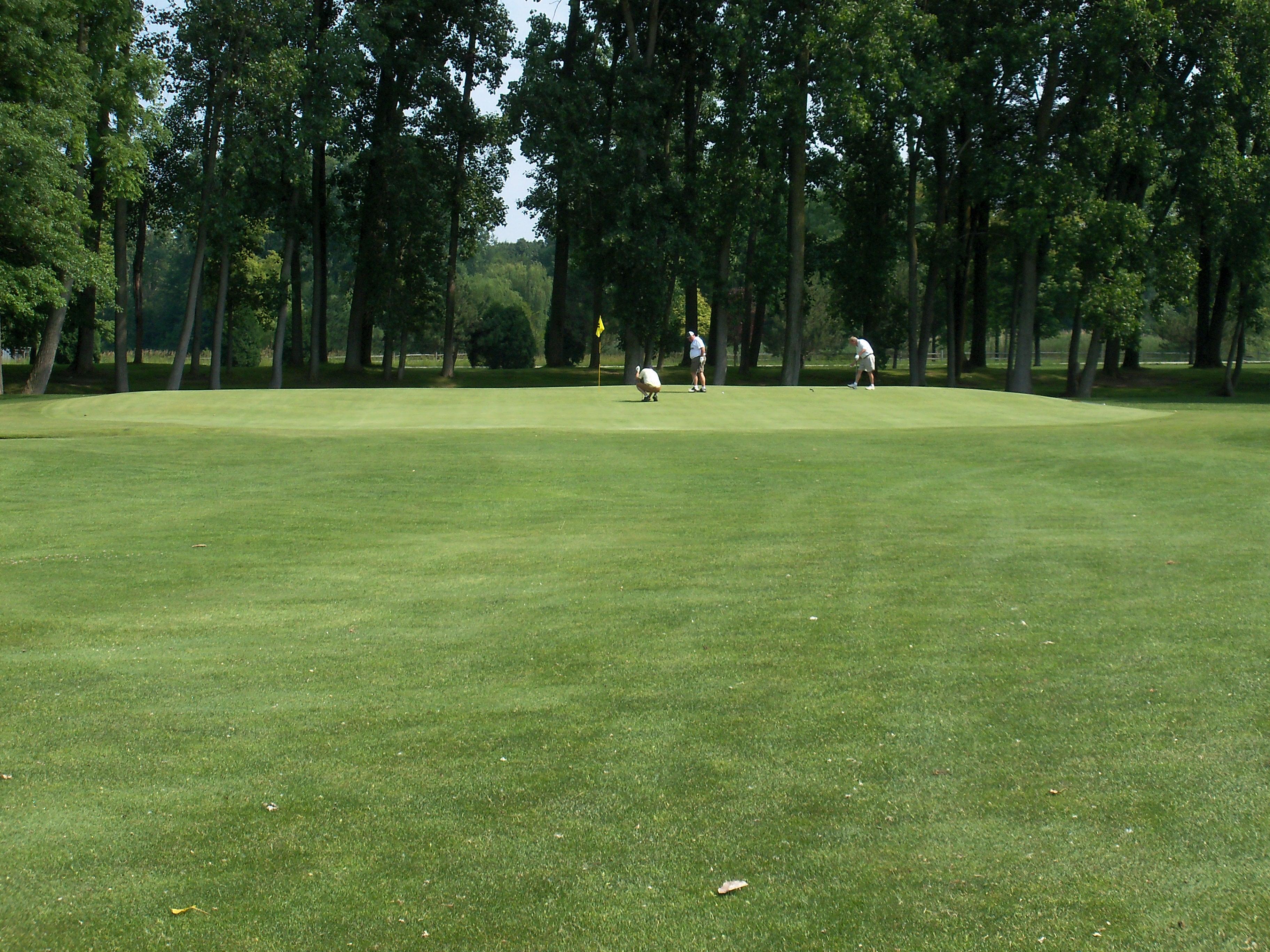 Saturday Golf Scrambles